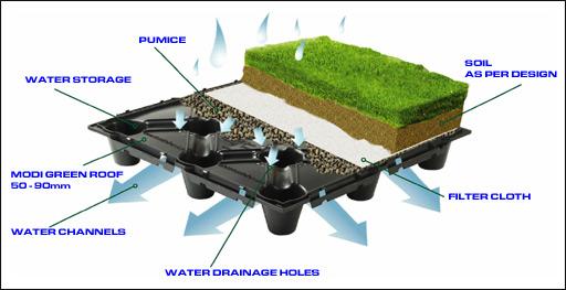 Cara menanam rumput diatas atap rumah ( green roof )