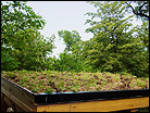 Dillon Nature Center Green Roof